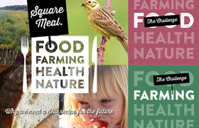 Square Meal report calls for fundamental changes in UK food and farming