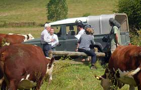 Pasture-Fed on BBC Countryfile