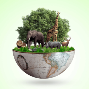 Biodiversity is a global concern