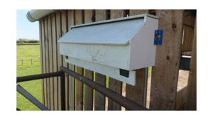Swift nest box built by Andy