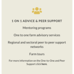1 on 1 advice and peer support